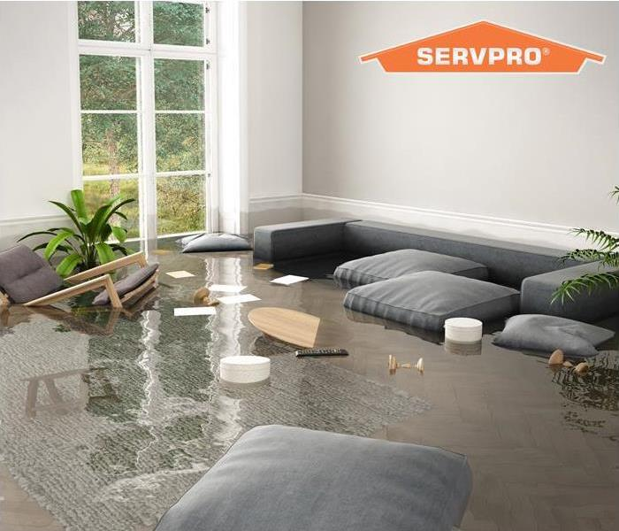 standing water in living room